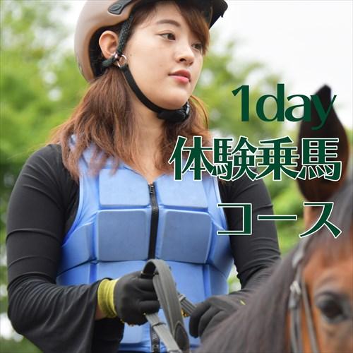 1day体験乗馬コース