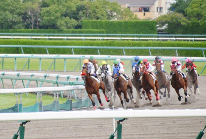 ジョッキーになるには -【関東で乗馬体験】千葉の「オリンピッククラブ」